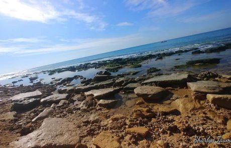 תמונת היום: חוף פולג